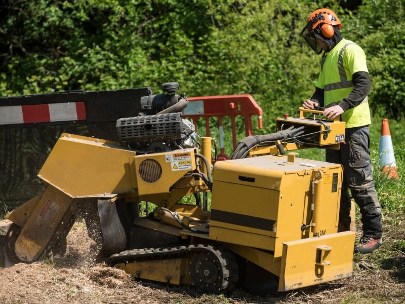A heavy duty stump grinder with rubber caterpillar tracks being used to grind out the remaining tree